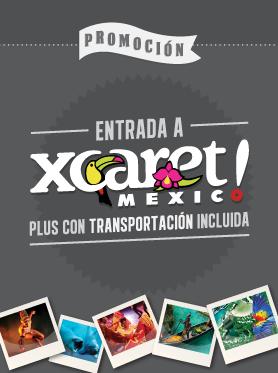 x-caret